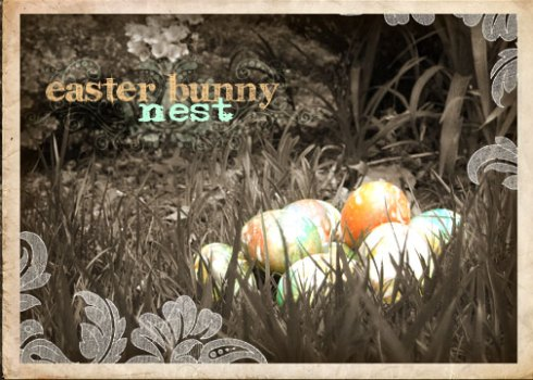 EasterNest-WEB